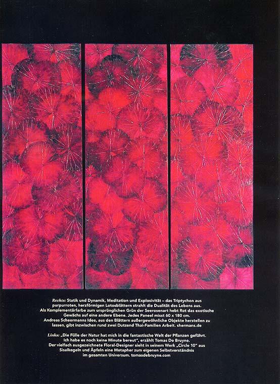 Artikel über Lotusbilder von Shermans